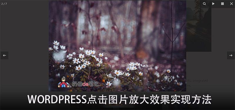 WordPress fancybox点击图片放大效果